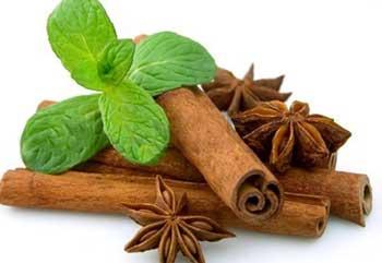 درمان نفخ شکم با گیاهان دارویی