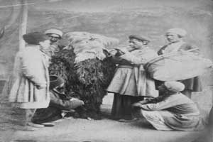 تصاویری کمیاب از جشن نوروز در زمان ناصر الدین شاه