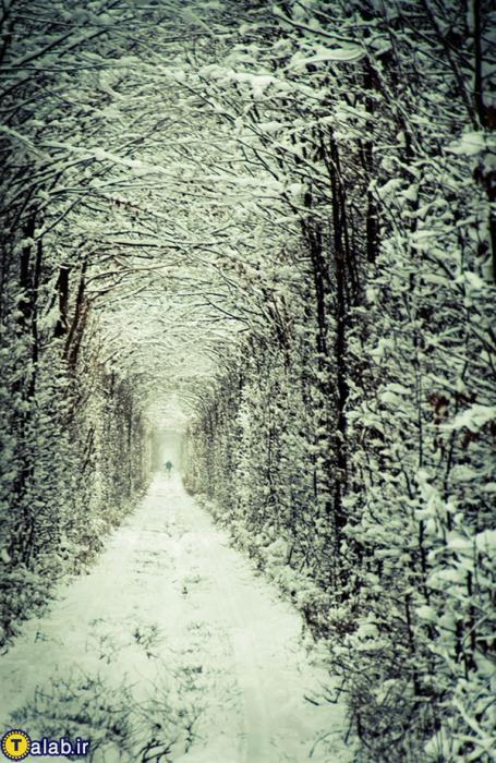 عکس های از رمانتیک ترین مکان جهان