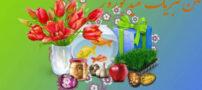سال نو مبارک – تبریک مدیر سایت تالاب