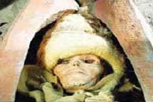 جراحی مغز یک زن در بیش از 3000 سال پیش