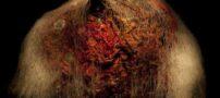 عکس هایی جالب از نحوه فاسد شدن میوه ها