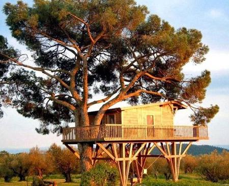 زیباترین خانه و کلبه های چوبی جهان (عکس)