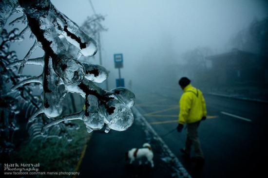 مه ای که یک شهر را منجمد کرده است + تصاویر