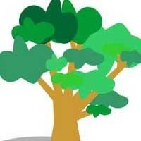 درخت ماه تولدتان