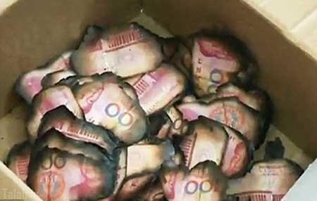 زنی که 100 میلیون پول را با سهل انگاری سوزاند (عکس)