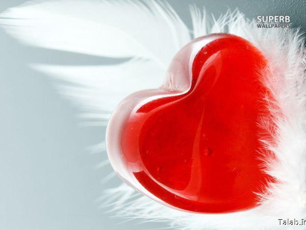 قلب های عاشقانه(عکس)