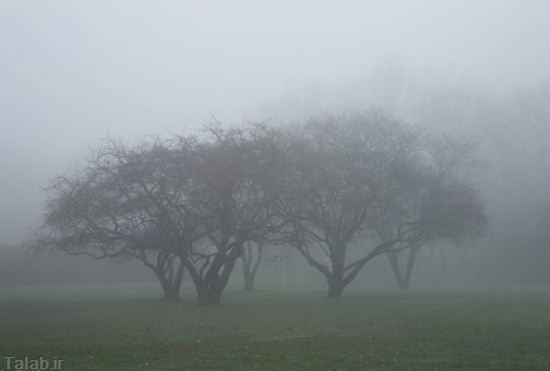 مکانهایی که در مه زیبایی دوچندان دارند