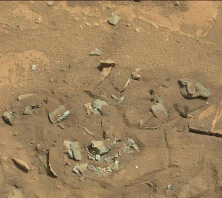 استخوان های کشف شده مریخی + عکس