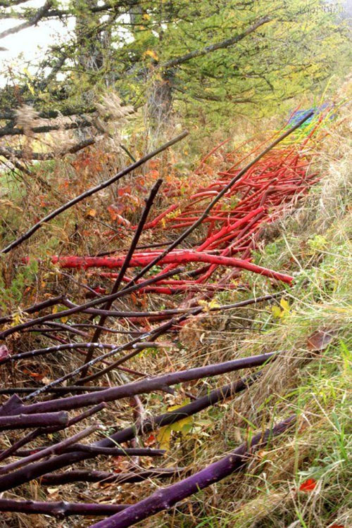 مسابقه هنری فقط با شاخه و برگ موجود در طبیعت (عکس)