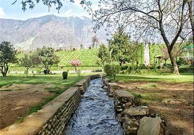 باغ زیبای هارون در کشمیر (+ تصاویر)