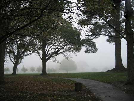 آشنایی با کرایست چرچ شهر باغ های زیبا در کشور نیوزلند