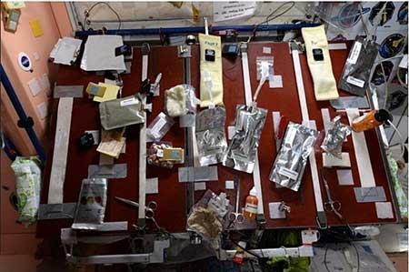 تصاویر جالب یک فضانورد از سوژه های فضایی مختلف