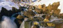 چشمه میشی، بهشتی برای مسافرت های بهاری