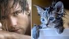 عکس های خنده دار از ژست های جالب گربه و پسران خوشتیپ