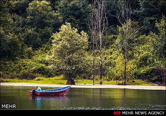 معرفی دریاچه الیمالات در شهرستان نور + تصاویر