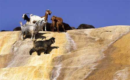 آشنایی با چشمه کانی گراوان در استان آذربایجان غربی