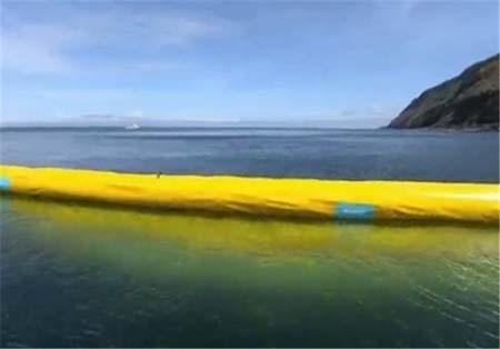 تمیز نگه داشتن دریا و قایانوس ها با ابتکار این جوان (عکس)
