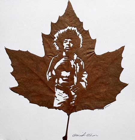 عکس هایی دیدنی از هنرمندی یک ایرانی با برگ درختان