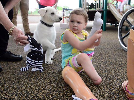 دوستی زیبای دختر معلول و یک سگ + تصاویر