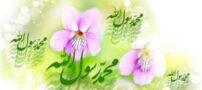 اس ام اس های زیبای تبریک مبعث پیامبر (ص) – 3