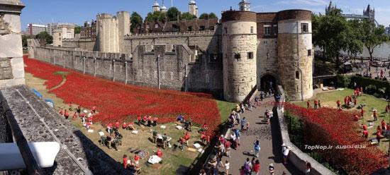 کاخ سلطنتی و تاریخی لندن (عکس)