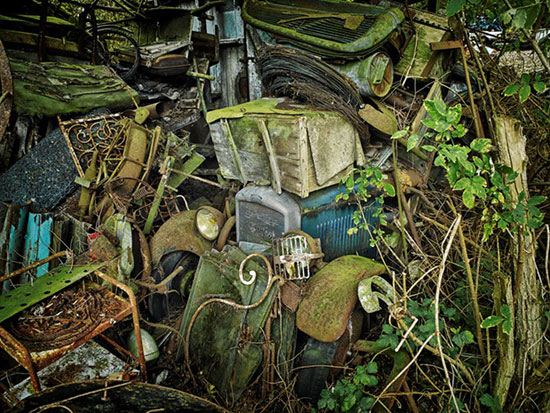 قبرستان جنگلی و زیبای ماشین ها + تصاویر