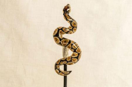 تصاویر آبنبات های حیوانی هنرمندانه