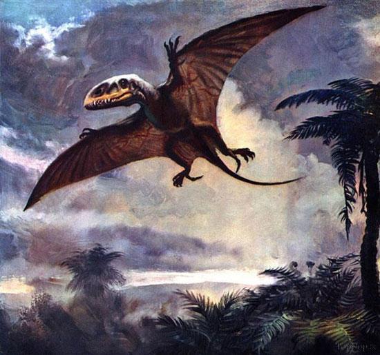 تصاویری از حیوانات ما قبل تاریخ