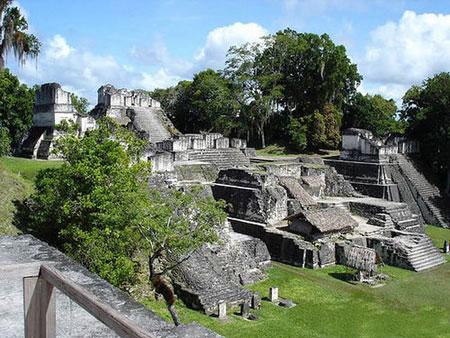 جنگل های اسرار آمیز تیکال در گواتمالا (+عکس)