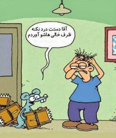 عکس های خنده دار و طنز خرداد 94