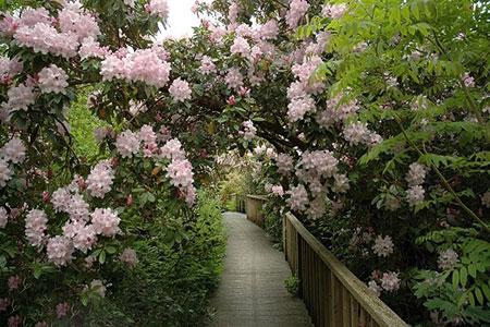 معرفی زیباترین باغ های جهان + تصاویر