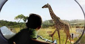 باغ وحش مدرن و جالب در کشور دانمارک + عکس