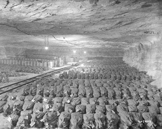 پیدا شدن گنج های پنهان هیتلر + عکس