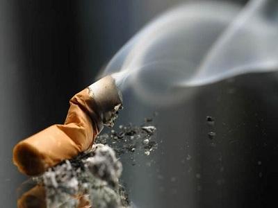 مواد خوراکی مناسب افراد سیگاری