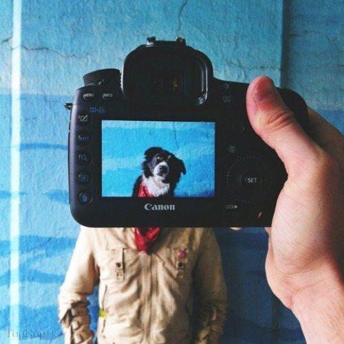 عکس های دیدنی از ترکیب حیوانات خانگی و صاحبانشان