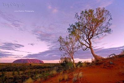 تصاویری از طبیعت زیبای صحراهای استرالیا