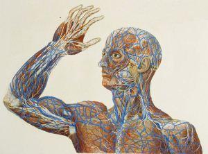 نکات عجیب و باورنکردنی در مورد بدن انسان