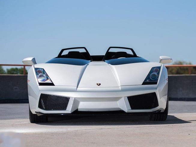 گاو وحشی که سوپر خودرو است ( + تصاویر)