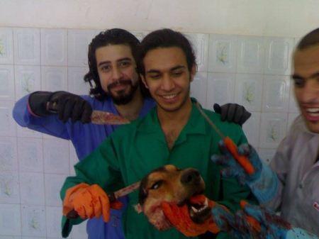 عکس گرفتن دانشجویان دامپزشکی با اجساد حیوانات