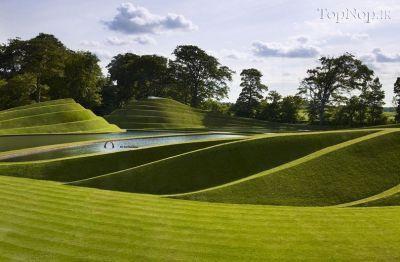 عکس هایی از یک باغ آرایی مدرن