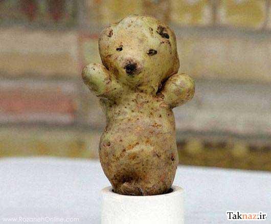 تصاویری از میوه های خنده دار