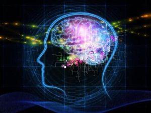 دانستنی های جالب و خواندنی در مورد مغز انسان