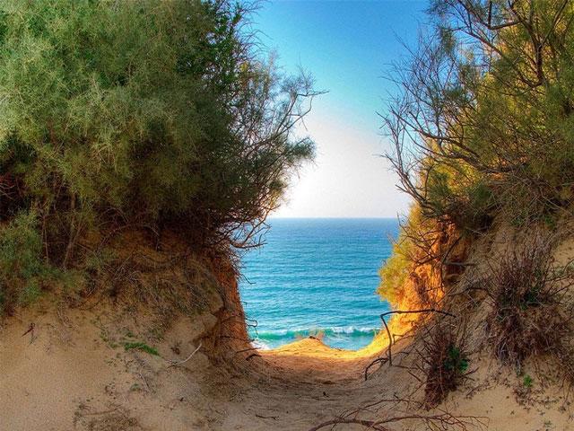 تصاویری از طبیعت دریاهای شگفت انگیز