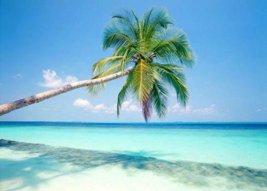 عکس های زیبا از ساحل و غروب آفتاب آرامش بخش
