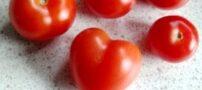کدام میوه ها و اندام بدن انسان شبیه هم هستند؟