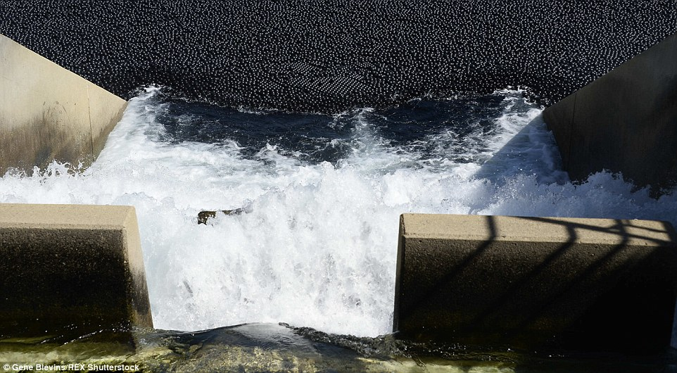 یک ایده جالب برای جلوگیری از تبخیر آب + تصاویر