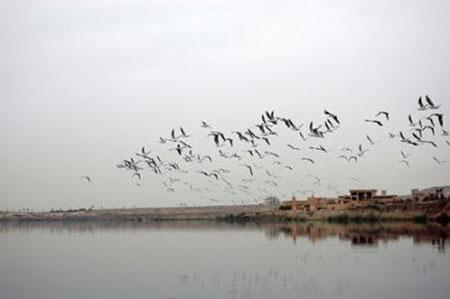 عکس های دریاچه فشافویه تهران با امکانات سواحل اروپایی