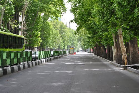خیابان ولی عصر تهران طولانیترین چنارستان جهان