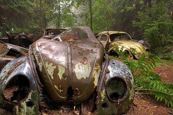 گورستان خودروهای جنگ جهانی دوم + تصاویر
